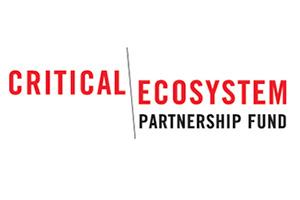 sponsors-CEPF-logo